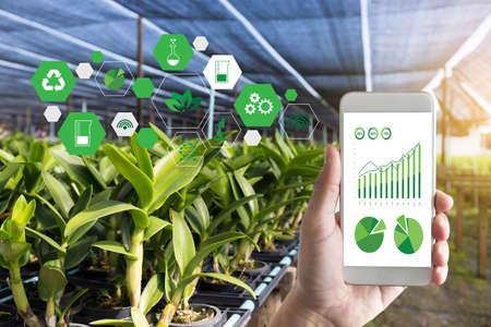 koncepcja technologii rolniczej mężczyzna Agronom za pomocą tabletu w dziedzinie rolnictwa przeczytać raport