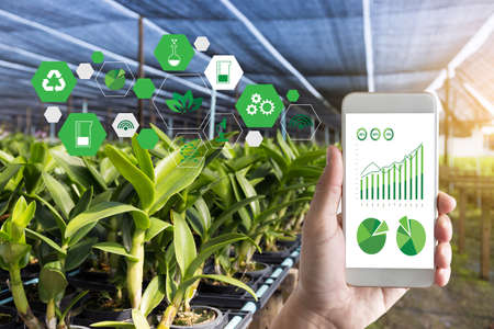agriculture technology concept man Agronomist Using a Tablet in an Agriculture Field read a report Stockfoto