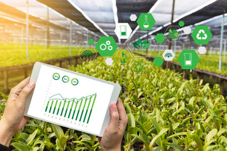 agriculture technology concept man Agronomist Using a Tablet in an Agriculture Field read a report Imagens