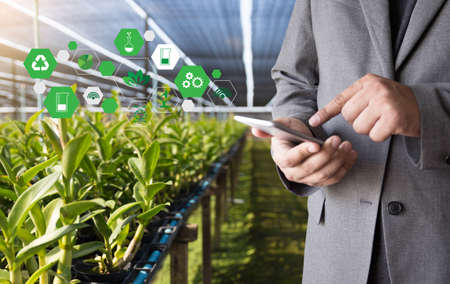 agriculture technology concept man Agronomist Using a Tablet in an Agriculture Field read a report Stock Photo