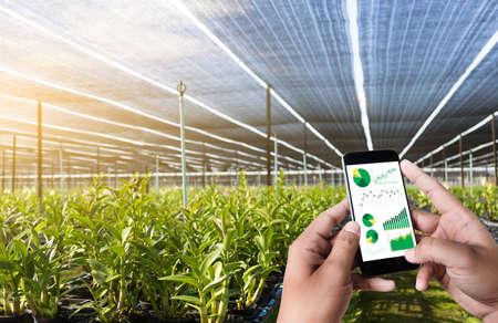 concepto de tecnología de agricultura hombre que representa una tableta en un campo de la agricultura que revela un informe