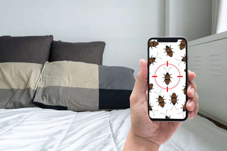 Women are checking for unusual things and detecting bed bugs in the bedroom. 免版税图像 - 101491700