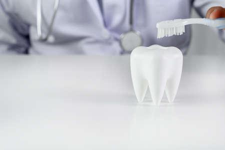 Hygiène dentaire et éducation Dent, santé, concept de dentisterie