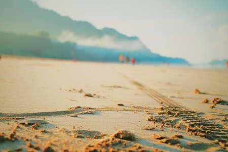 Sandstrand Standard-Bild