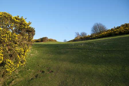 Blackford Hill