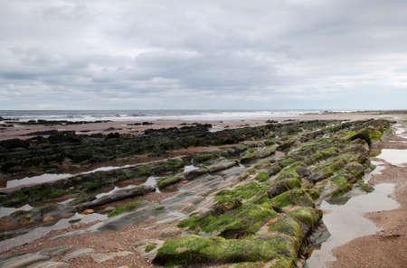 Berwick-upon-Tweed Beach
