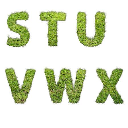 grass font: fonts