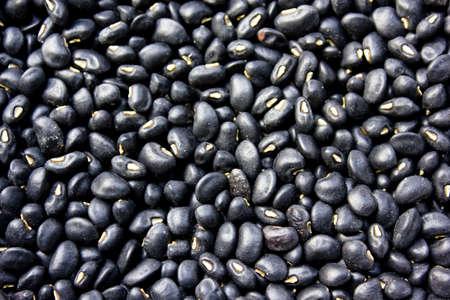 turtle bean: bean