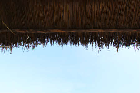 thatched roof photo