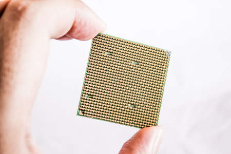 gilt: Gilt legs of the processor photographed with increase