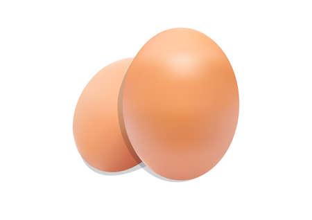 huevo blanco: Dos huevos de pollo fresco sin ningún tipo de fisuras