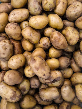 potato background potatoes in the market. Heap of potato root. Close-up potatoes texture. Banco de Imagens