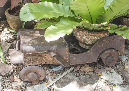 The old car used to support the pot