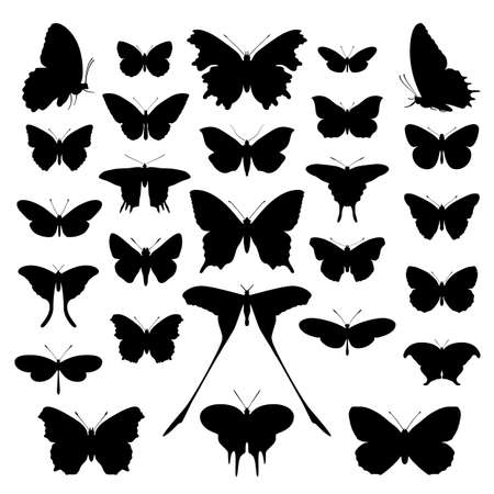 tekening vlinder: Butterfly silhouet, instellen. Vlinders icoon verzameling achtergrond.