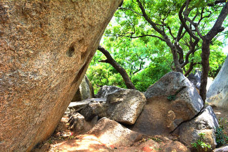 A Giant Rock And Some Small Rocks And Trees In A Garden In Mahabalipuram,  Tamil