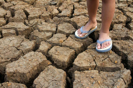 Dry cracked soil  due to drought Standard-Bild