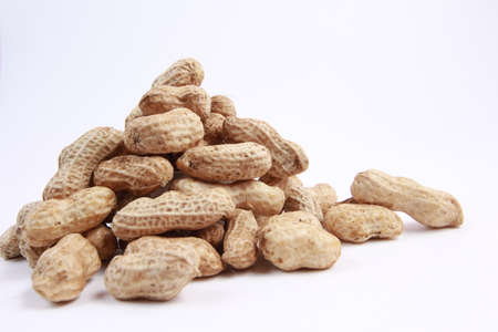 monkey nuts: peanuts