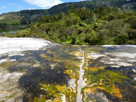 landscape of hot geotermal area with colored water and mud, New Zealand