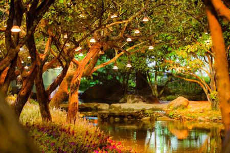 밤, 빈티지 스타일에서 공원에서 나무와 램프