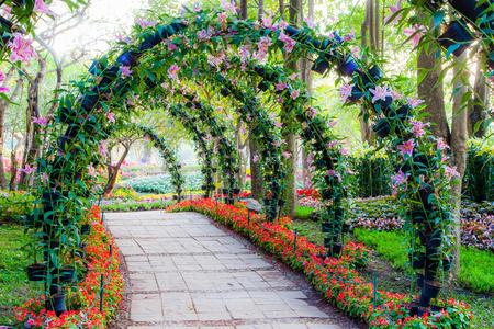 관상용 식물 정원 산책로와 아름다운 꽃 아치