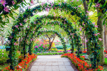 beautiful flower arches with walkway in ornamental plants garden photo