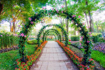 美しい花の観賞植物庭の通路のアーチします。