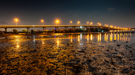 mire: Landscape of night bridge with mire in river