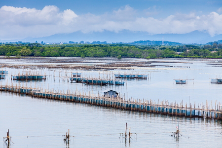fish rearing: landscape of fish farms along the river with mangrove forest, blue sky and mountain