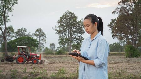 Asian female farmer using portable tablet computer in farmland. Modern farming concept, advanced technology in agriculture. 免版税图像