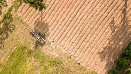Aerial view above agriculture farmland while farmers working together diligently. - Image 免版税图像