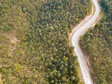 Aerial view flying over jungle with road two lane - Image