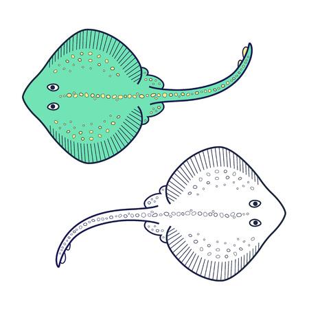 stingray: Stingray icon. Illustration