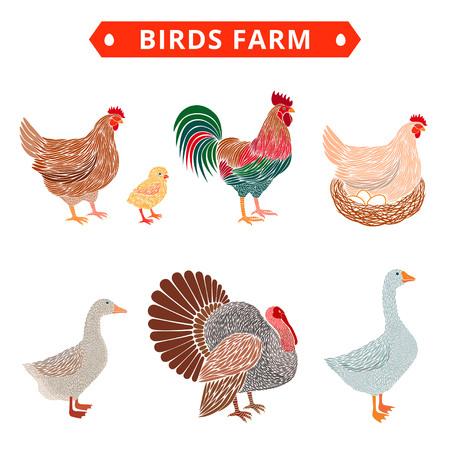Birds farm. Poultry birds: duck, rooster, chick, goose, hen, turkey.