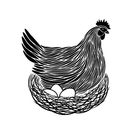 Vector illustration of a brooding hen.