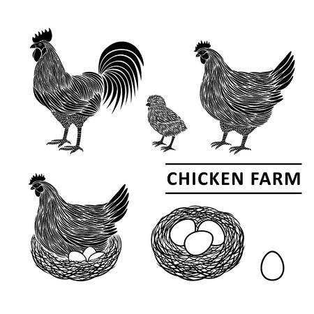 鶏ファーム プレミアム品質。  イラスト・ベクター素材