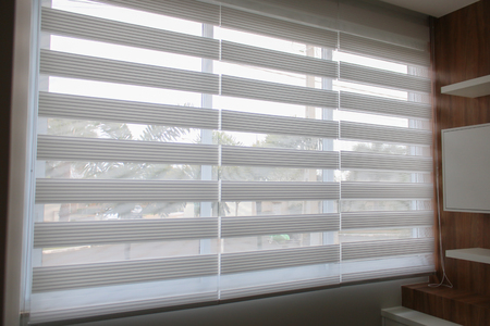 Blinds double vision, dual mink, zebra. Images for the dissemination of decorative products