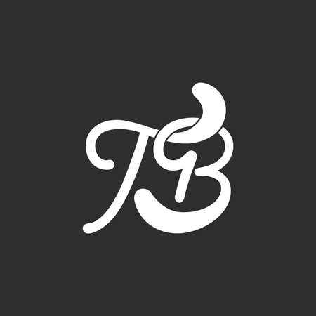 letter tb linked curves design logo vector Ilustrace