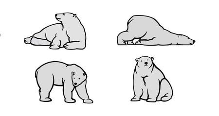 grizzly: Blanc icônes d'ours polaires - illustration vectorielle pour vous.