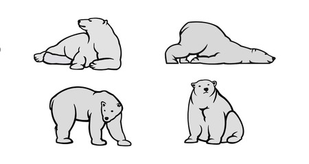 bear silhouette: White Polar bear icons - vector illustration for you.