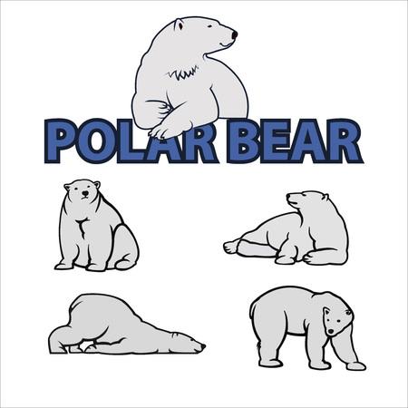 White Polar bear icons Ilustração