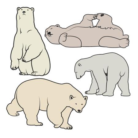 White Polar bear icons - illustration for you.