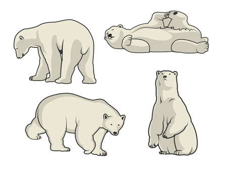 Witte Ijsbeer iconen - vector illustratie voor u. Stockfoto - 57624922