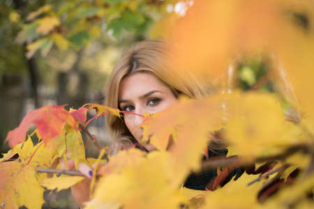 leafs: look behind the leafs