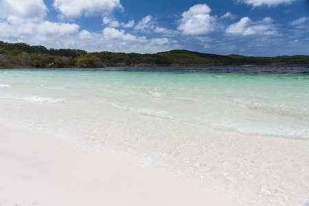 largest tree: Crystal clear waters of Lake McKenzie, Fraser Island, Australia Stock Photo