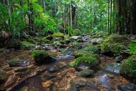 hinterland: Gold Coast and Tweed Coast hinterland waterfalls, Australia