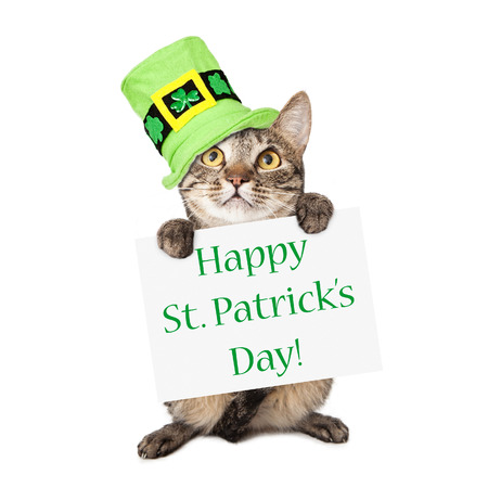A cute brown and black striped cat wearing a festive green hat while holding up a sign with the words Happy St. Patricks Day