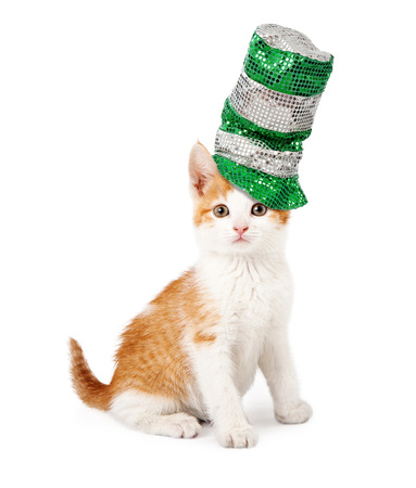 An adorable little kitten sitting to the side wearing a sparkly green and silver St. Patricks Day hat photo