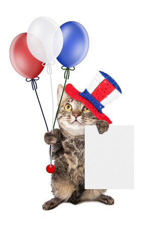 Cute cat wearing Fourth of July hat and holding balloons and a blank white sign to enter your message on photo
