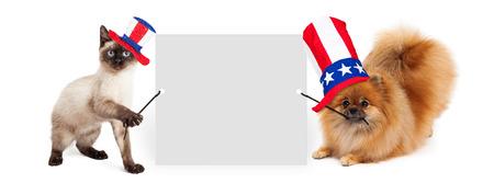 Gatito siamés y el perro de Pomerania sosteniendo un cartel en blanco mientras usa rojo, blanco y azul gorras Día de la Independencia de América Foto de archivo - 40880714