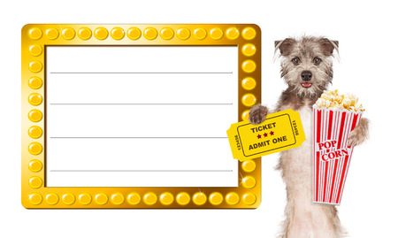 pass on: Cute dog next to a blank illuminated show sign holding popcorn and an admission ticket